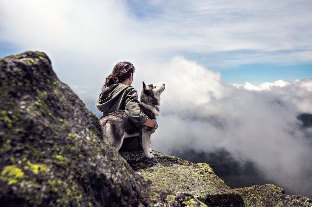 husky y su dueño