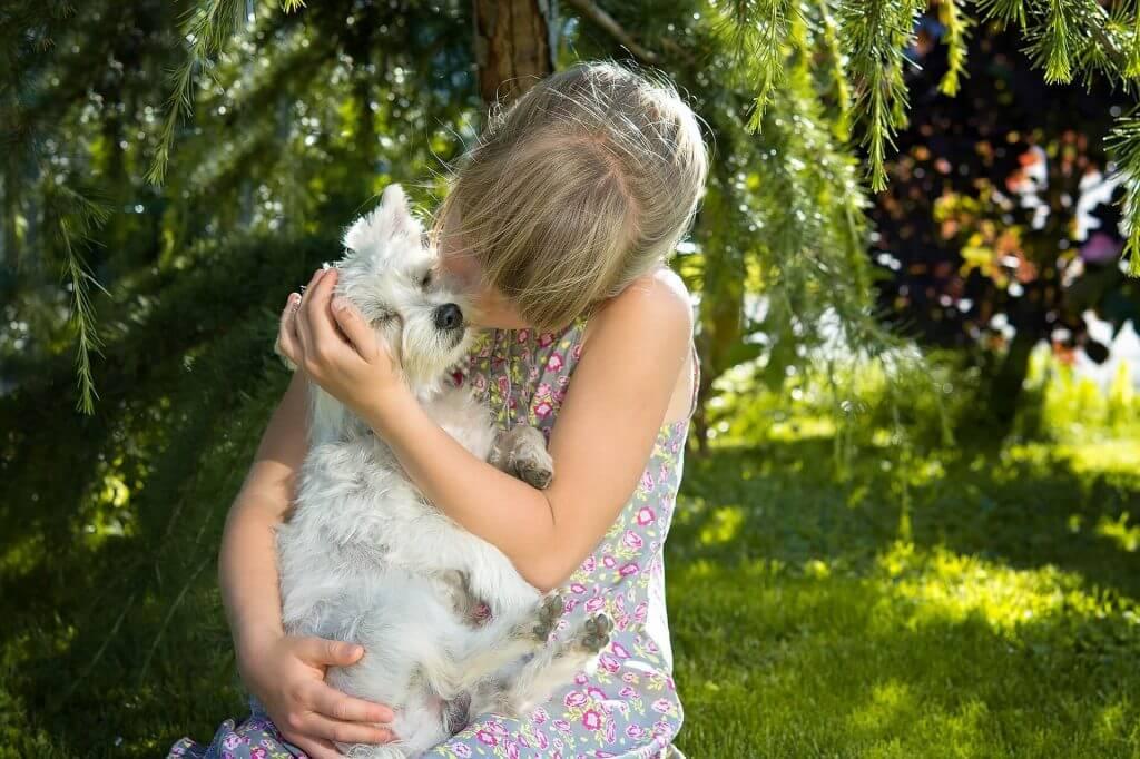 perro feliz con niño