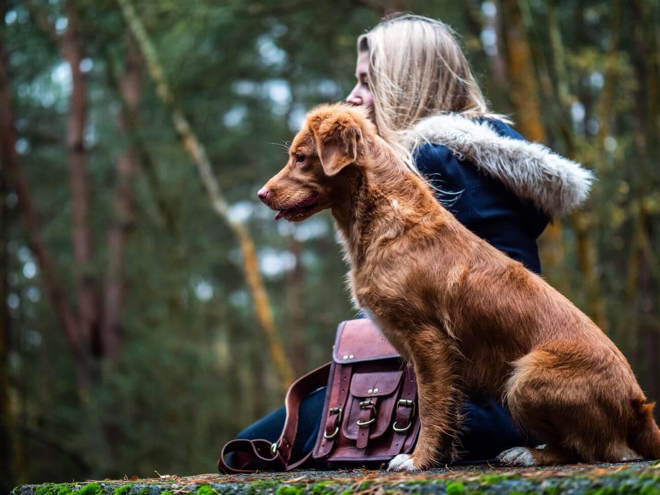 cada perro es un mundo