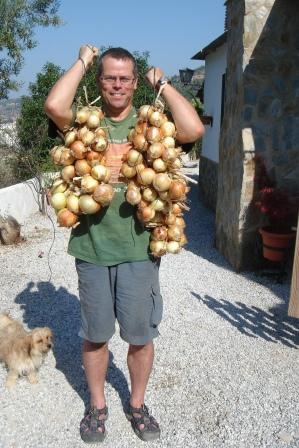 onion-stringer